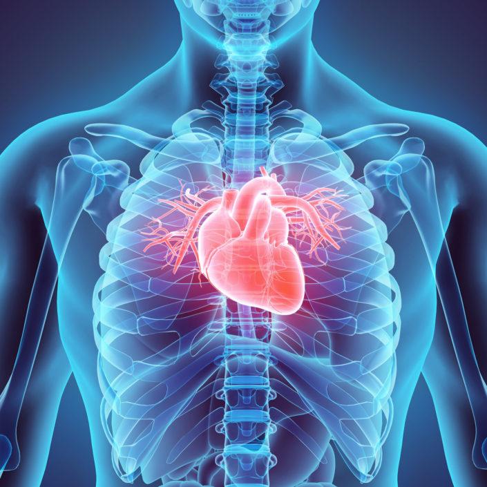 Heart - American Health Council