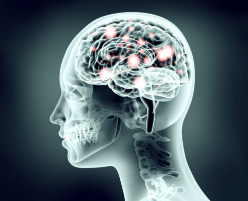 The Uncertain Brain: Untangling Ambiguity in Neural Circuits - Health Council