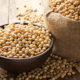 Soy Intake Helps Osteoporosis - Health Council