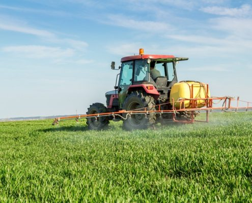Chemicals in Food Packaging, Fungicides Might Damage Children's Teeth - Health Council