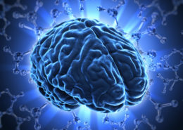 Researcher's Identify why Humans Have the Largest Cerebral Cortex - Health Council