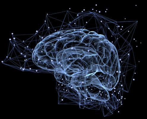 Brain - American Health Council